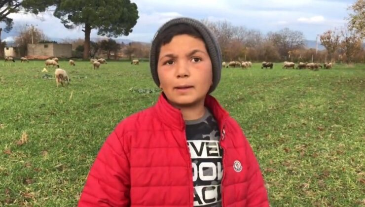 12 yaşındaki çoban şevki yorumlara ne cevap verdi