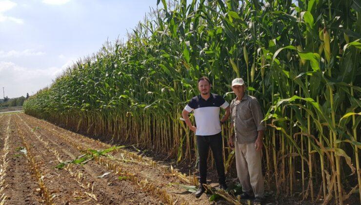 GÜBRETAŞ model alanlarla bilinçli tarıma öncülük ediyor