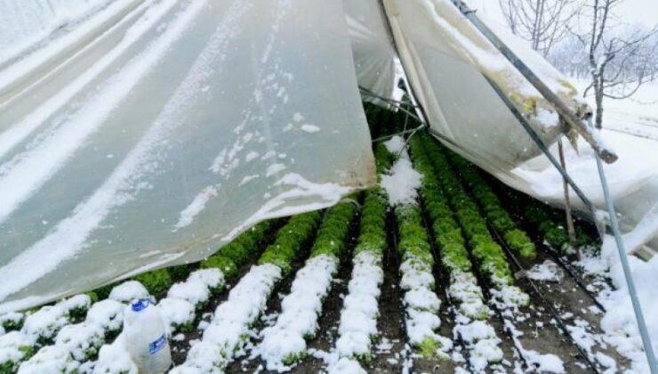 kar kütlelerinin ağırlığına dayanamayan seralar çöktü
