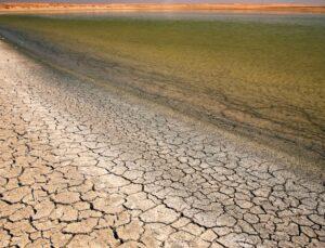 yeni iklim koşullarına uygun ürünler ekmeliyiz