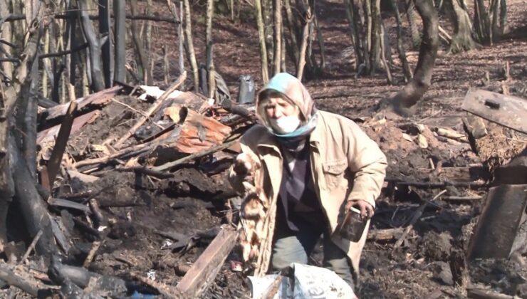 yangında onlarca hayvanı telef olan yaşlı kadının feryadı