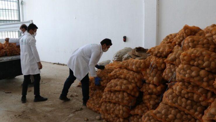 belediye patates üreticisine el uzattı