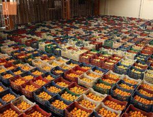 türkiye, ocak-şubat döneminde 528 milyon dolarlık yaş meyve sebze ihraç etti