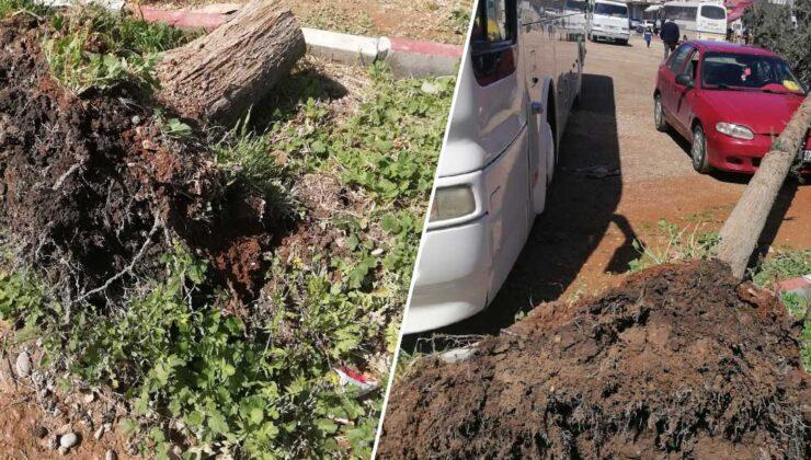 mersin'de fırtına araç ve tarım arazilerine zarar verdi