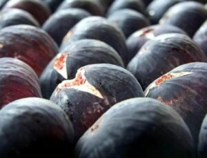 """""""bursa siyahı"""" incirde hedef dünya pazarı"""