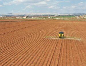 pamuk tohumları toprakla buluşmaya başladı