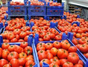 ilk üç ayda 128,9 milyon dolarlık domates ihraç edildi
