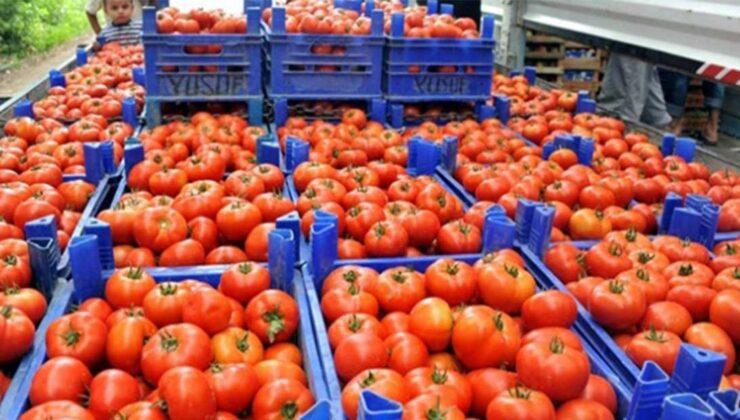 İlk üç ayda 128,9 milyon dolarlık domates ihraç edildi