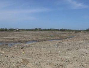 350 dekarlık arazide kenevir üretilecek