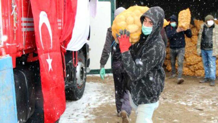 tmo, nevşehir'de patates alımlarına başladı