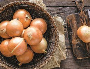 soğanın fiyatı tarlada 70 kuruşa düştü