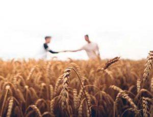 tarım girişimcisine 200 bin tl hibe