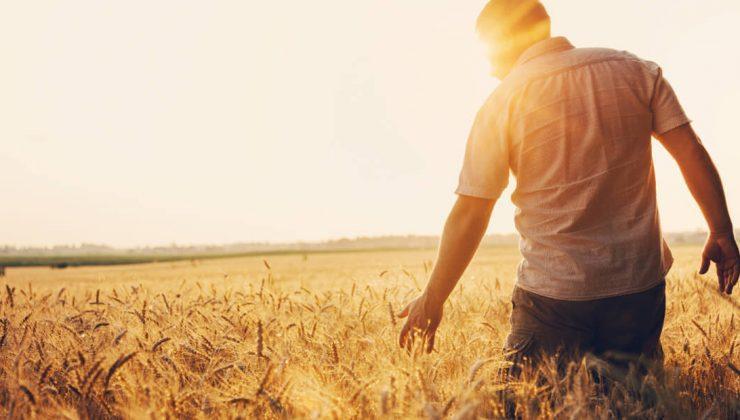 14 mayıs dünya çiftçiler günü çiftçi tv'de kutlanır