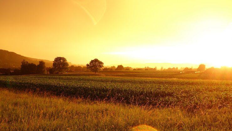 14 mayıs dünya çiftçiler günü sizin kanalınız çiftçi tv'de