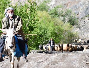 30 gün yol yürüyen göçerler yaylaya ulaştı