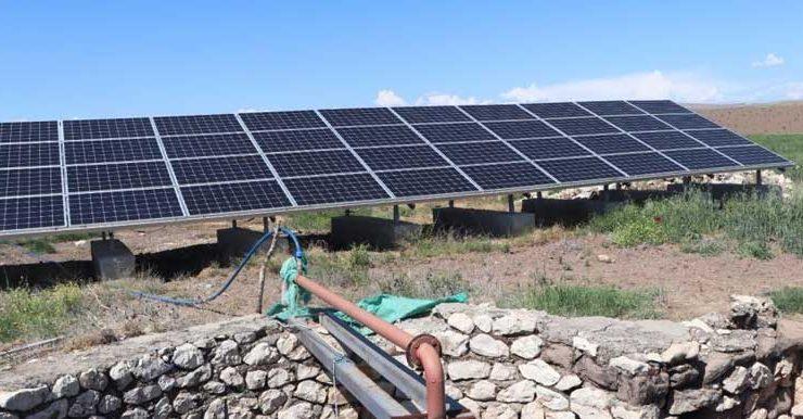 güneş paneli sayesinde ekinlerini kuraklıktan korudu