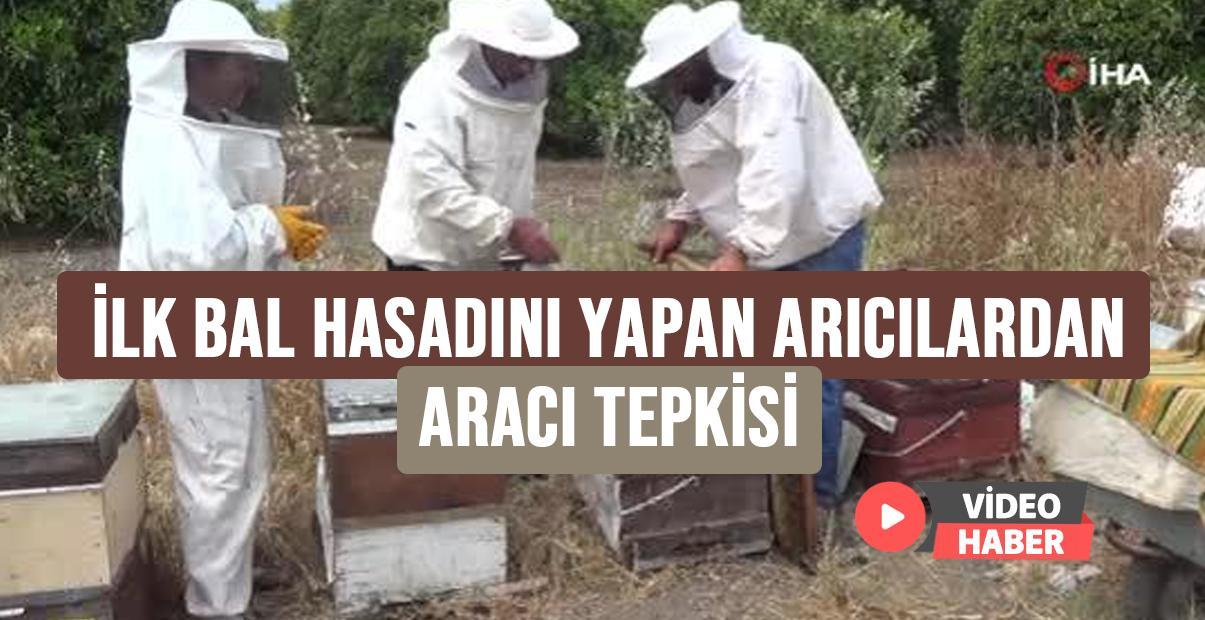 İlk bal hasadını yapan arıcılardan, aracı tepkisi