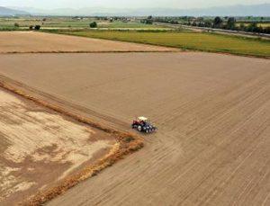 lif pamuk üretiminde bu yılki hedef 800 bin ton