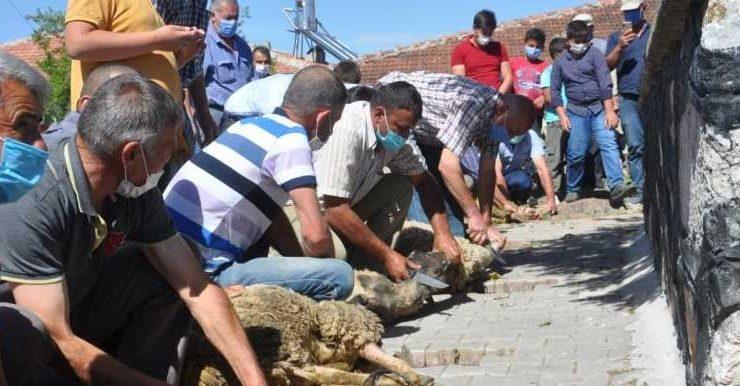 köylüler yağmur duasına çıktı, kurban kesti