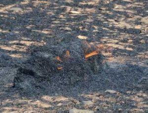aksaray'da 100 dekarlık tarladaki arpa ve buğday yanarak kül oldu