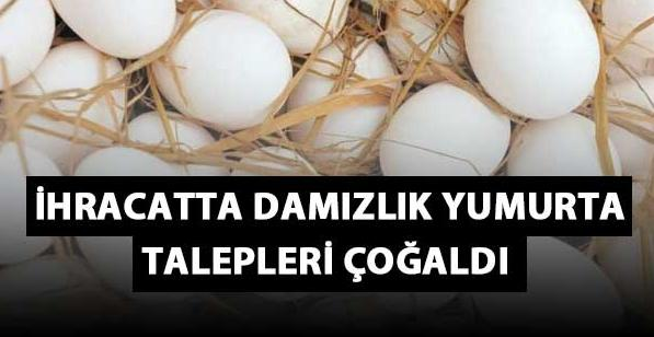 İhracatta Damızlık Yumurta Talepleri Çoğaldı
