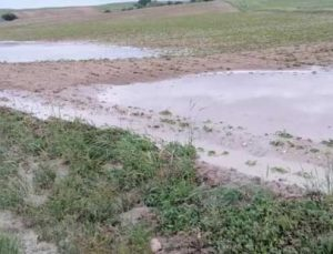 Fırtına ve sel ekili tarım alanlarına zarar verdi