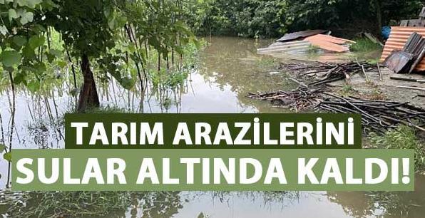 Tarım arazilerini su altında kaldı