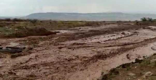 nallıhan'da dereler taştı, tarım arazileri sele teslim oldu