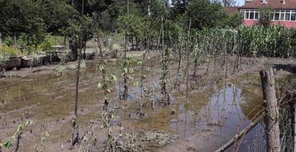 afette 147 çiftçi zarar gördü