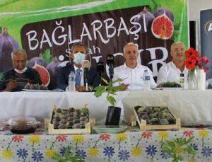 türkiye'nin ilk 'siyah incir' hasadı mersin bağlarbaşı'nda yapılıyor