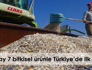 aksaray 7 bitkisel ürünle türkiye'de ilk 10'da