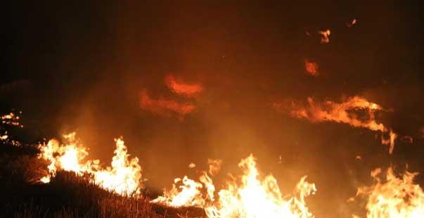 Edirne'de çıkan anız yangını korkuttu