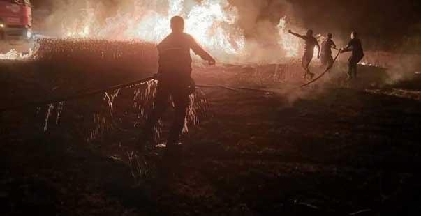 buğday ekili 8 dekarlık alan kül oldu