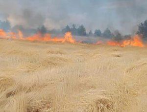 karabük'te ekin tarlasında yangın