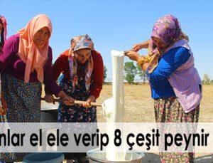 kadınlar el ele verip 8 çeşit peynir üretti