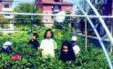 Okul bahçesinde yetiştirilen ürünlerin hasadı başladı