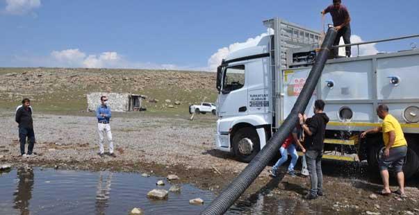 2 milyon sazan yavrusu göllere bırakıldı
