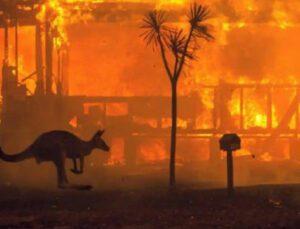 tarsim'den yangın hakkında son durum değerlendirmesi