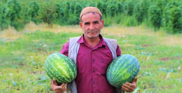 kendi ektiği sebzeleri 15 yıldır yol kenarındaki tezgahında satıyor
