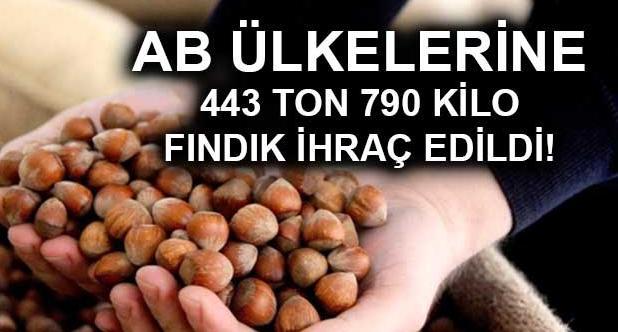 AB ülkelerine 443 ton 790 kilo fındık ihraç edildi