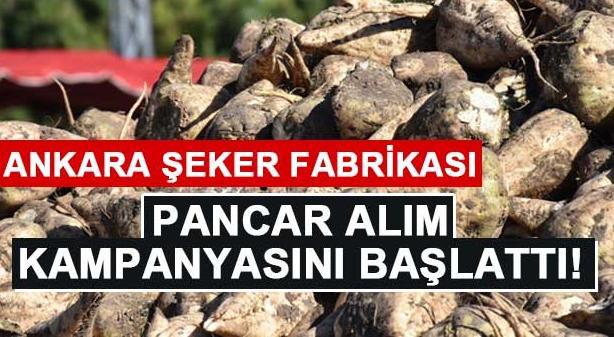 Ankara Şeker Fabrikası yeni sezon pancar alım kampanyasını başlattı
