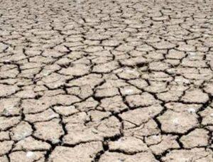 kuraklık nedeniyle verim kaybı yaşayan üreticilere destek