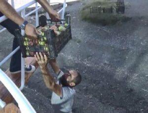 fırsatçılara kızdı 30 ton elmayı ücretsiz dağıtacak