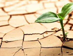 kuraklık desteği açıklandı