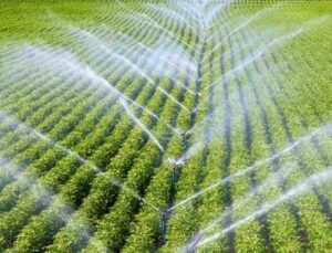 """mutlu doğru: """"tarımsal sulama elektriğinde vergi indirimi bekliyoruz"""""""