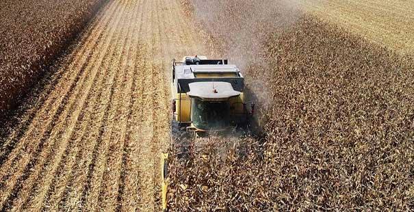 tarım-üfe yıllık yüzde 24,69 arttı