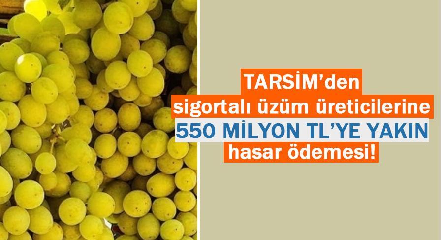 TARSİM'den sigortalı üzüm üreticilerine 550 milyon TL'ye yakın hasar ödemesi