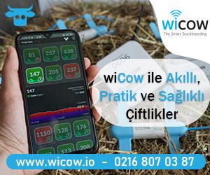 WICOW Türkiye