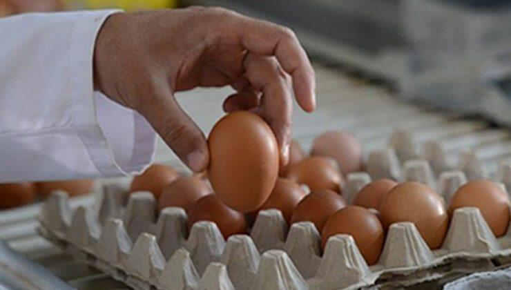 Fiyatlardaki artış yumurtaya yansıdı