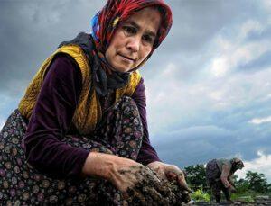 bu toprakların kanalı çiftçi tv 15 ekim dünya kadın çiftçiler günü'nü kutlar